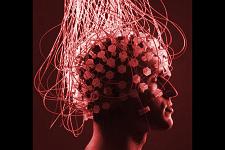 Brain Rewiring Cont.